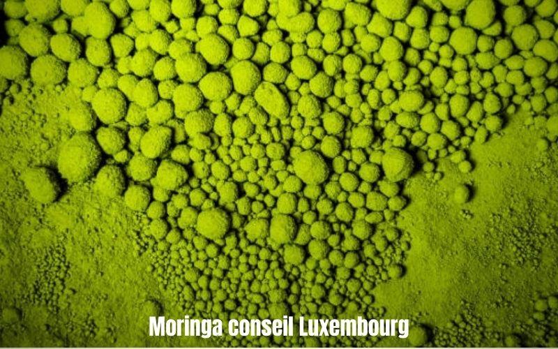 Le Moringa protège ton organisme des radicaux libres - Moringa Conseil Luxembourg